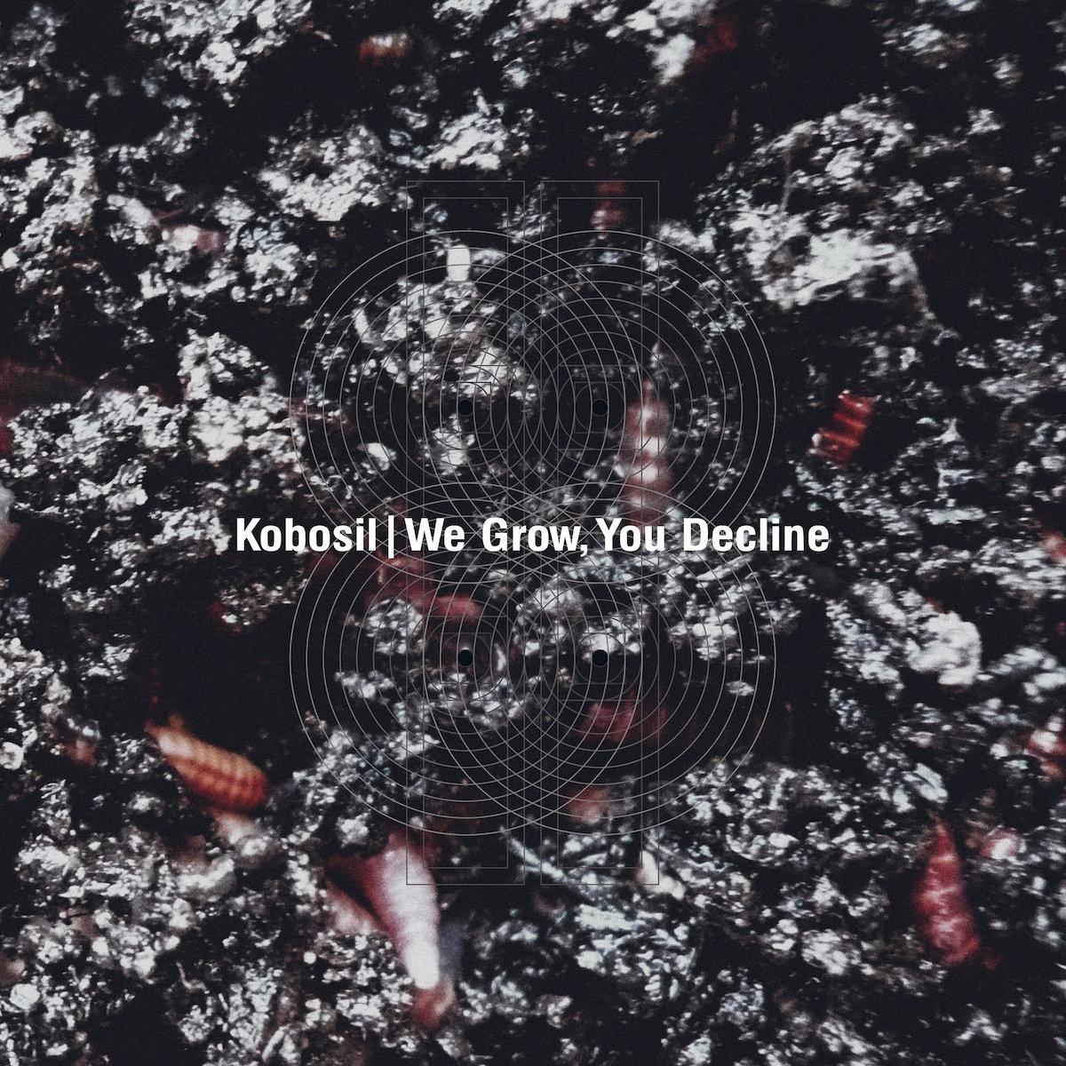 Album of the week: Kobosil – We Grow, You Decline